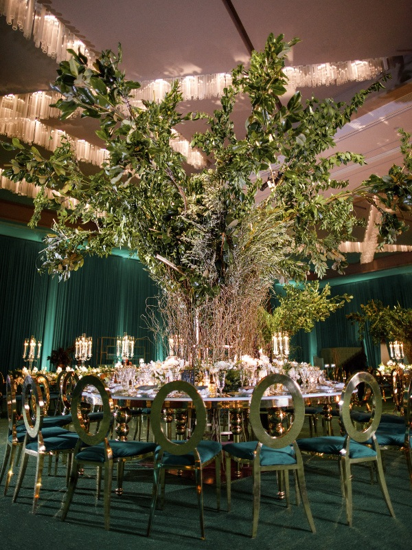 Installation d'arbres au mariage
