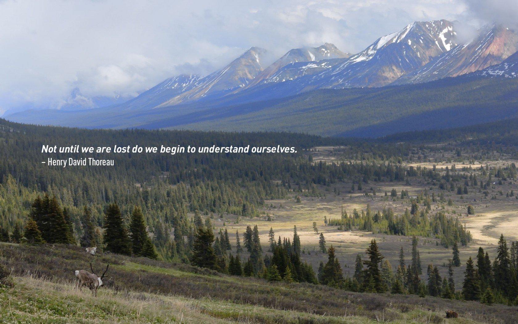Citation de voyage de Henry David Thoreau.