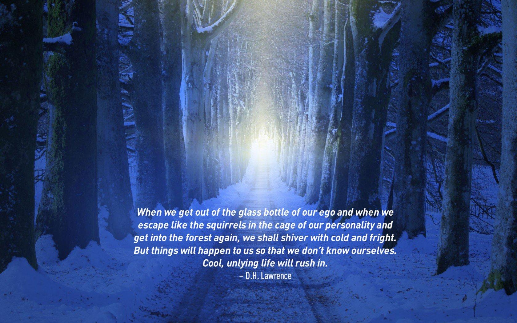 Citation de voyage célèbre de D.H.Lawrence. Chemin isolé à travers une forêt enneigée.