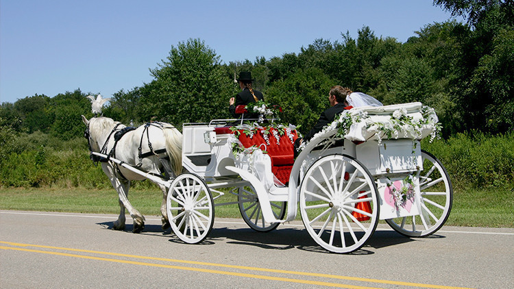 Calèche au mariage champêtre | Guide de la mariée: 6 idées de thèmes de mariage champêtre vintage dès le ranch! | Ranch de la rivière Westgate